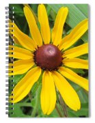 Black-eyed Susan Spiral Notebook