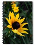 Black-eyed Susan Glows With Cheer Spiral Notebook