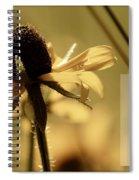 Black-eyed Susan  Psalm Spiral Notebook