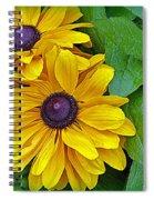 Black-eyed Susan Spiral Notebook