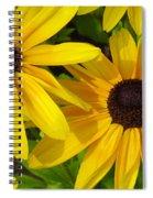Black-eyed Susans Close Up Spiral Notebook