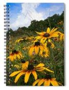 Black-eyed Susans Spiral Notebook
