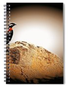 Black Francolin Spiral Notebook