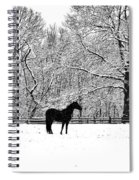 Black Horse In The Snow Spiral Notebook