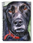 Black Lab In Watercolor Spiral Notebook