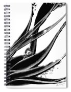Black Magic 303 By Sharon Cummings Spiral Notebook