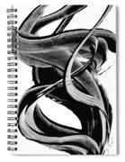 Black Magic 314 By Sharon Cummings Spiral Notebook