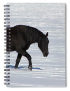 Black Magic Spiral Notebook