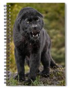 Black Panther Spiral Notebook