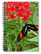 Black Red And White Butterfly Spiral Notebook