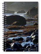 Black Rocks Lichen And Sea  Spiral Notebook