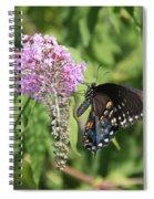 Black Swallowtail Spiral Notebook