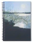Black Swan Lake Spiral Notebook