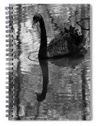 Black Swan Series Iv - Black And White Spiral Notebook