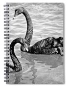 Black Swans - Black And White Textures Spiral Notebook