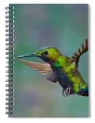 Black-throated Brilliant Spiral Notebook