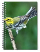 Black-throated Green Warbler, Female Spiral Notebook