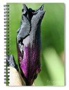 Black Torch Spiral Notebook