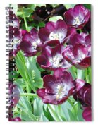 Black Tulips Spiral Notebook