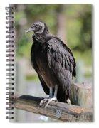 Black Vulture On The Boardwalk Spiral Notebook