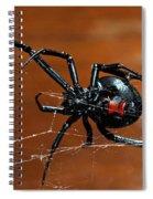 Black Widow Spider Spiral Notebook