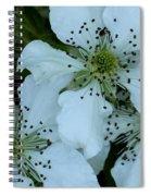 Blackberry Blossoms Spiral Notebook