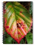 Blackberry Leaf In The Fall 4 Spiral Notebook