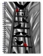 Blackbird Ladder Spiral Notebook