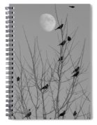 Blackbirds By The Moon Spiral Notebook