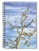 Blackbirds In A Tree Spiral Notebook