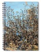 Blackened Gold Spiral Notebook
