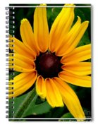 Blackeyed Susan Spiral Notebook