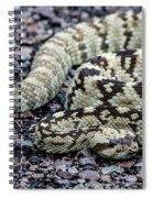 Blacktailed Rattlesnake Spiral Notebook