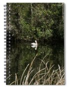 Blackwater River Pelican Spiral Notebook