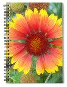 Blanket Flower Spiral Notebook