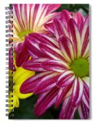 Blast Of Colors Spiral Notebook