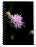 Blazing Star Spiral Notebook