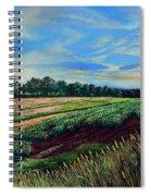 Blazing Sun On Farmland Spiral Notebook