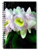 Blc Mary Ellen Underwood Krull-smith Spiral Notebook