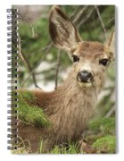 Blending In The Pines Spiral Notebook