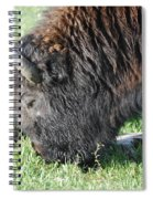 Blessed Bull Spiral Notebook