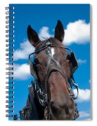 Blinders Because All Distractions Are Equal Spiral Notebook