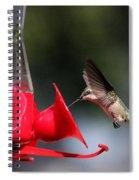 Blink Spiral Notebook
