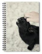 Bliss Number 2 Spiral Notebook