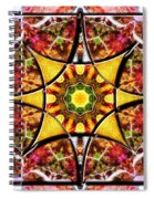 Blissful Ascension Spiral Notebook