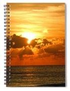 Blissful Ending Spiral Notebook