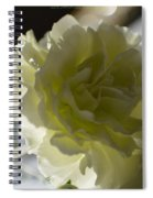 Blissful White Spiral Notebook