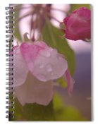 Blomming In The Rain Spiral Notebook