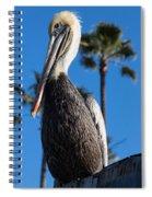 Blond Pelican Spiral Notebook