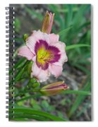 Blood Throated Lily 1 Spiral Notebook